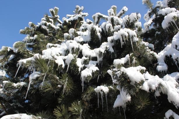 Zima wiosną 2013 roku